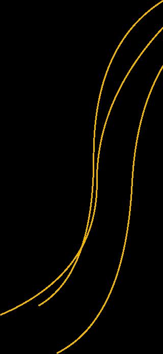HomePage-Hero-Shape (1)